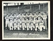 1957 Billings Mustangs Minor League Baseball Team Photo EX+