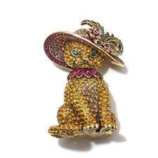 Heidi Daus Fabulous Tabby Crystal Pin  SOLDOUT ON HSN FOR $159.99 SWAROVSKI WOW