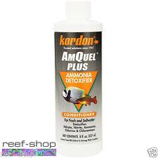Kordon AmQuel Plus 8 oz Detox Ammonia Chlorine Nitrate Nitrite FREE USA SHIPPING