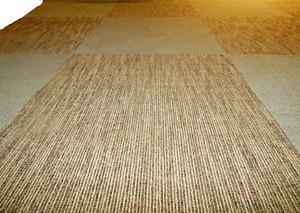 56 Pcs  Carpet Tile  24'' x 24''  Total  224 S/F Commercial Grade 100% Nylon .