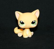 Authentic Littlest Pet Shop Yellow Shorthair Cat #1162 Green Eyes Kitty Orange