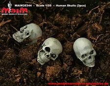 Human Skulls - Schädel (3pcs) / 1:35