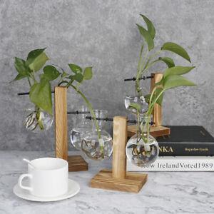 Terrarium Table Desktop Hydroponics Plant Bonsai Flower Pot with Wooden