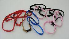 Welpenhalsband, Hundehalsband , Klickhalsband 1 cm breit, L. 24 - 27 cm