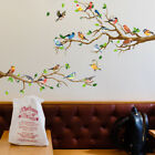 Birds Animal Printed Large Wall Sticker PVC Mural Decals Home Bedroom Wall Decor