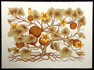 "Jules Roch ""The Indian Pompion"" Hand Signed Ltd ed Fine Art Serigraph, OBO"