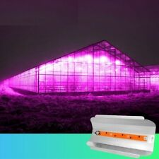 LED Floodlight 80W 50W 30W Greenhouse Flower Plants Seeding Growing Lighting