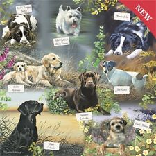 NEW Dog Jigsaw Puzzle Square 1000 Pieces Labrador Jack Russell Westie  Collie