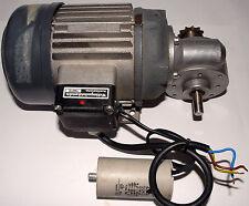 Lenze Typ 13 Getriebemotor Markisenmotor Wechselstrommotor Motor