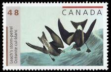"CANADA 1979 - ""Leach's Storm Petrel"" by John James Audubon (pa52811)"