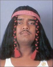 Native American Brave Wig Men's Black Shoulder Length Wig W/ Braids & Headband