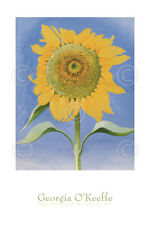 Sunflower, New Mexico, 1935 by Georgia O'Keeffe - Floral Art Print Pster 24x36
