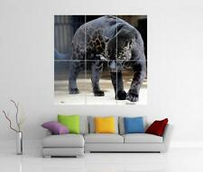 SPOTTED BLACK PANTHER GIANT WALL ART PRINT POSTER H70