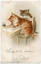AF. LYDON . Chats . Cats . Katze . Gato  .  L'écriture