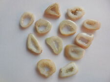 12 Pcs Lot Druzy Slice Agate Pendant Beads Gemstone Geode Small Natural White