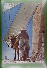 CPA Spain Formentera Windmill Moulin Vent Windmühle Animals Donkey Wiatrak w107
