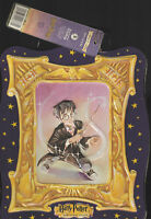 HARRY POTTER-THE SORCERER'S STONE-WARNER BROTHERS-CARRY CASE-LUNCH BOX-TAGS-2000