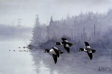 """GOLDENEYES A.M."" + + ""GOLDENEYE INVASION"" 2 s/n Duck Prints by Les Kouba"
