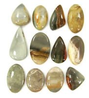226.35 Ct Natural Polychrome Jasper Gemstone Cabochon 12 Pc Lot Wire Wrap- 41200