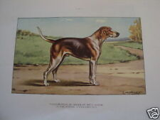 COMPOSITION CASTELLAN CHIEN CHASSE ANGLO FRANCAIS
