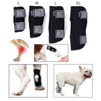 Small Pug Dog Leg Brace Hock Joint Knee Support Rear Therapeutic Pet Wrap Strap