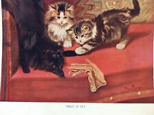 m17a4 ephemera 1920s book plate what is it cats play with dog