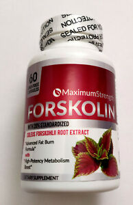 FORSKOLIN EXTRACT 500mg 60 Capsules See Photos