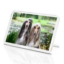 Beautiful Afghan Hounds Classic Fridge Magnet - Dog Puppy Cool Pets Gift #15880