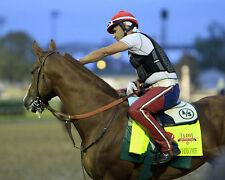 8x10 color photo - KY Derby Winner CALIFORNIA Chrome #5