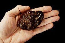 "Carnelian Tumbled 3.5"" x 2.5"" 9 Oz Rocks and Mineral Sacral Chakra Healing Stone"