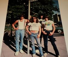 The Ramones / Punk Rock Group/ 11 x 14 Color Photo