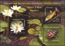 Romania 2008 Fish/Snail/Flower/Nature/Wildlife/Conservation 3v m/s (n44719)