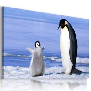 LOVELY BIRDS PENGUIN Wild And Domestic Animals Canvas Wall Art  AN312  MATAGA