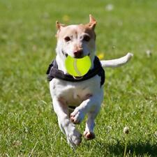 New listing 6.5cm Big Giant Pet Dog Puppy Tennis Ball Thrower Chucker Launcher Play Toys