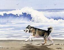 Alaskan Malamute At The Beach Watercolor Art Print Signed by Artist Djr w/Coa