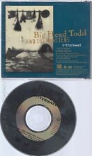 CD--BIG HEAD TODD AND THE MONSTERS--BITTERSWEET--PROMO