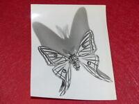 [PHOTOGRAPHIE] PIERRE AURADON / ARGENTIQUE 1940/50 Papillon Isabella 21x16