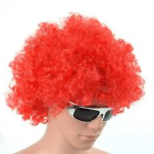 Afro Fancy Dress Wigs Funky Disco Clown Style Mens Ladies Costume 70S Curly Hair