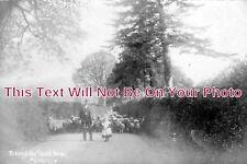 DE 1121 - Hemyock, Devon c1906 - 6x4 Photo
