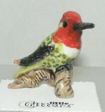More details for little critterz miniature porcelain bird anna's hummingbird