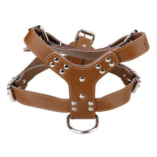 Leather Medium&Large Pet Dog Walking Collar Strap Control Harness Lead Brown