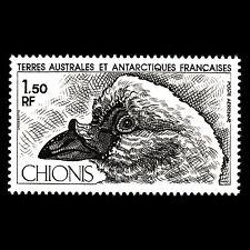 TAAF 1981 - Antarctic Fauna Birds Animals - Sc C65 MNH