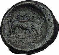 Thessalonica in Macedonia 158BC RARE  Ancient Greek Coin Athena Cult Bull i40603