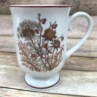 Fanci Florals Collection BRAMBLE Mug Cup Japan Wildflowers Brown