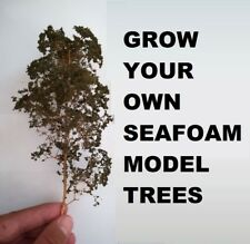 Seafoam Model Trees Grow Your Own - 250 SEEDS Approx - Sea Foam Teloxys Railway