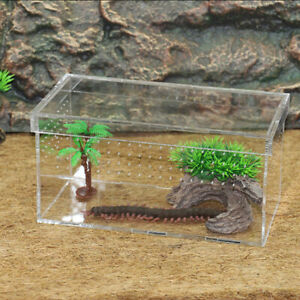Acrylic Reptile Terrarium Gecko Lizard Snake Spider Vivarium Tank