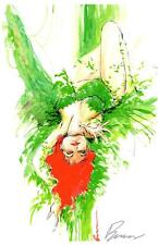 """POISON IVY ART PRINT SIGNED BY HOT COMIC ARTIST BUZZ 11""""x17"""""""