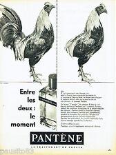 PUBLICITE ADVERTISING 066  1961  Pantène  traitement cheveu par Yila-Rapha
