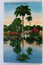 Florida FL Majestic Royal Palm Postcard Old Vintage Card View Standard Souvenir