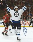 Mathieu Perreault Signed 8x10 Photo Winnipeg Jets Autographed COA